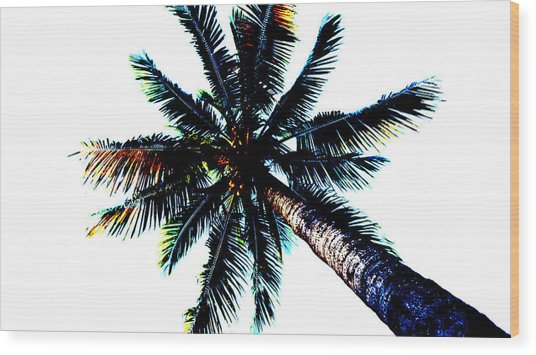 Frazzled Palm Tree Wood Print