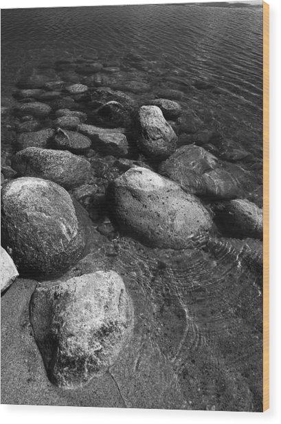 Free At Last Wood Print by Stan Wojtaszek