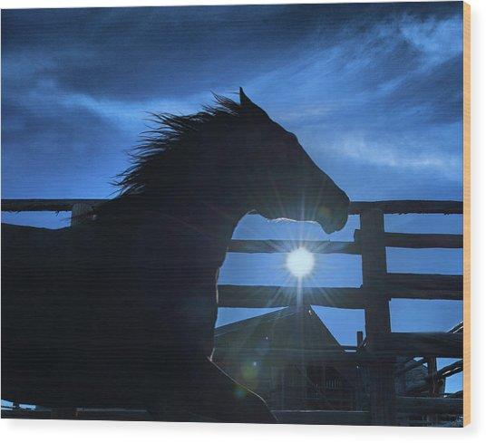 Free Spirit Horse Wood Print