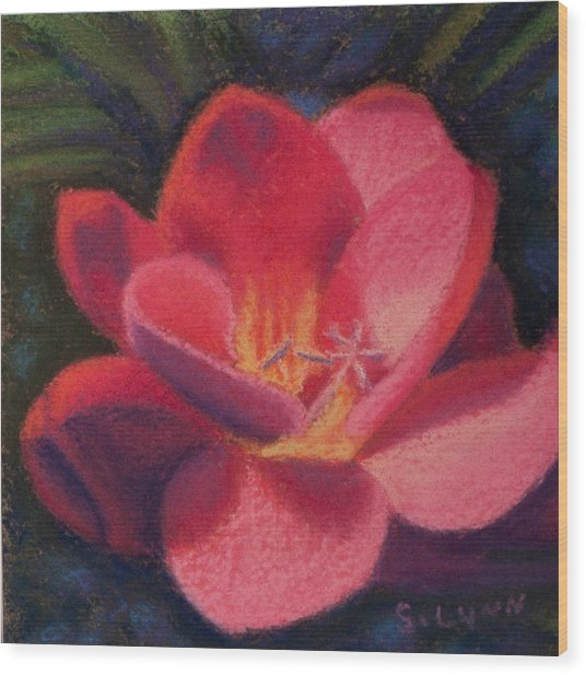 Freesia Dawn Wood Print