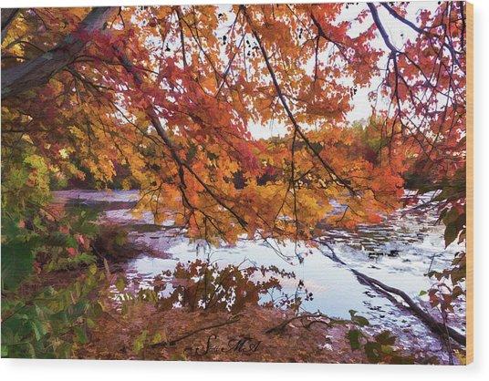 French Creek 15-107 Wood Print