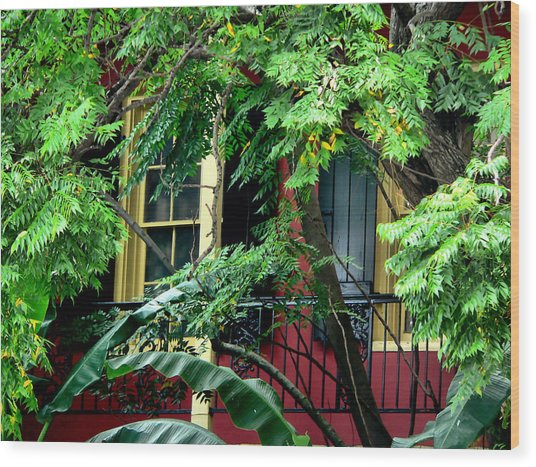 French Quarter Foliage  Wood Print