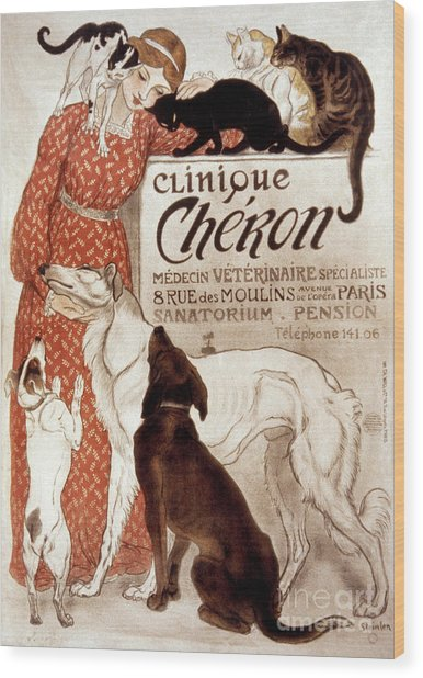 French Veterinary Clinic Wood Print