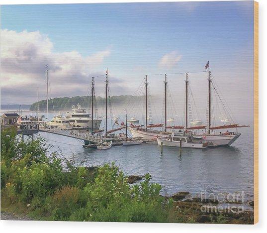 Frenchman's Bay Bar Harbor Wood Print