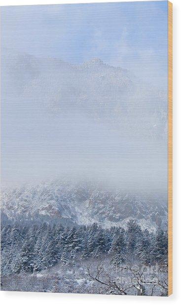 Fresh Snow In Cheyenne Mountain State Park Wood Print