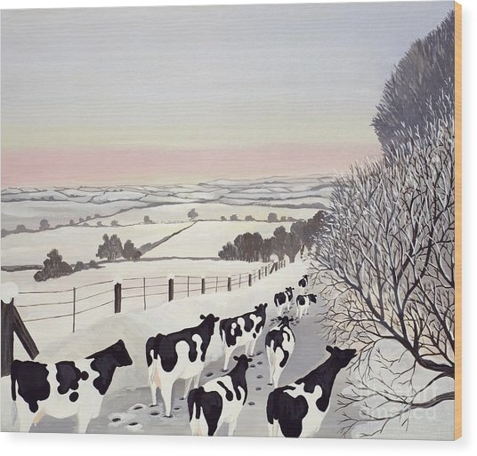 Friesians In Winter Wood Print