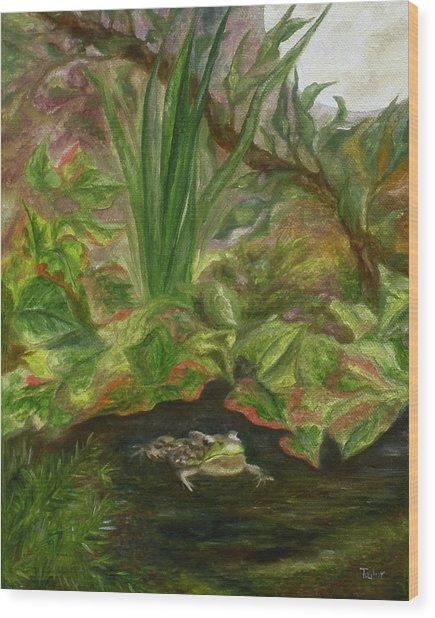 Frog Medicine Wood Print