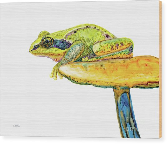 Frog Sitting On A Toad-stool Wood Print