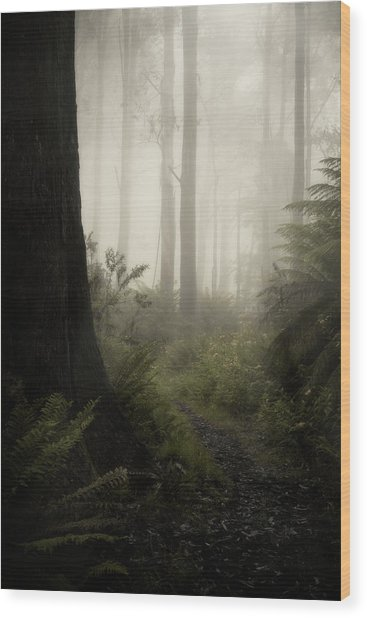 From Darkness Wood Print