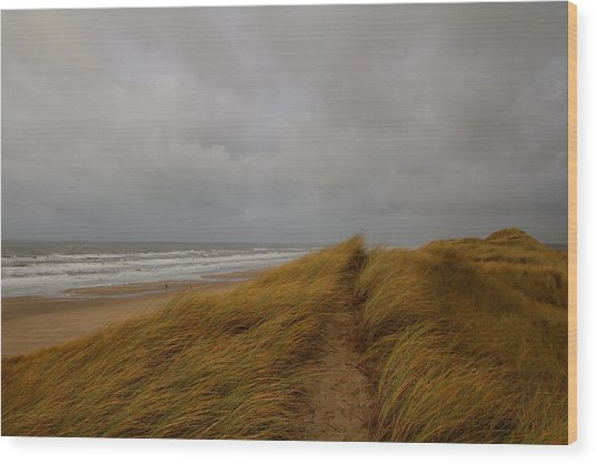 From Dunes To Sea Wood Print