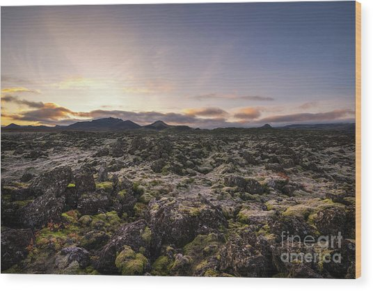 Frost Covers The Lava Field  Wood Print