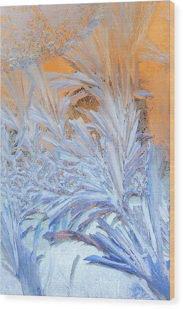 Frost Patterns On Window Wood Print