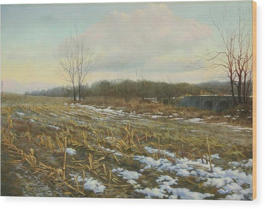 Frost Wood Print by Stephen Bluto