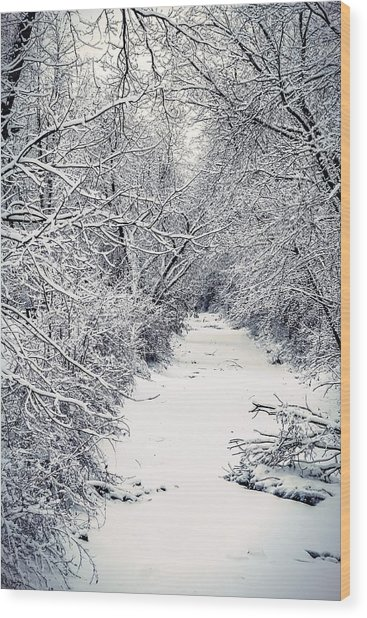 Frosted Feeder Wood Print