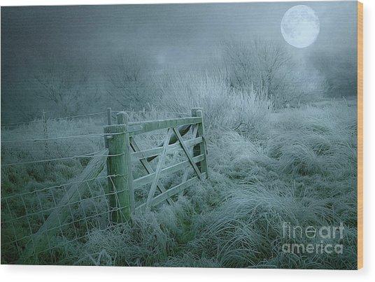 Frosty Night Wood Print