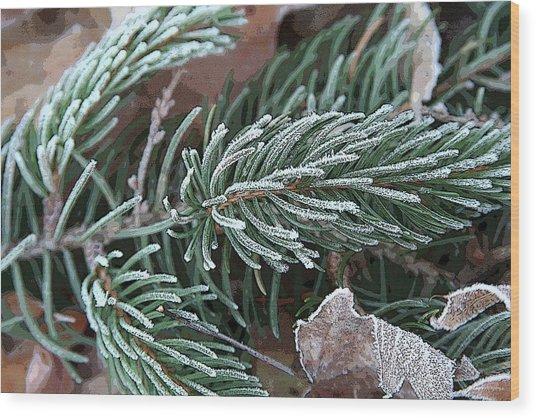 Frosty Pine Branch Wood Print