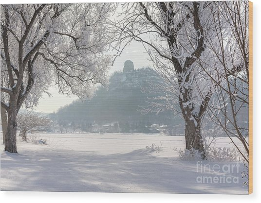 Wood Print featuring the photograph Frosty Sugarloaf Between Trees by Kari Yearous