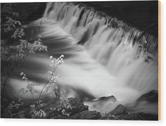 Frothy Falls Wood Print