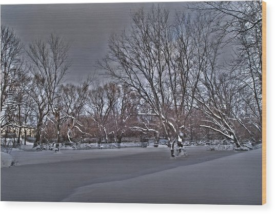 Frozen At The Creek's Edge Wood Print by Steven Geer