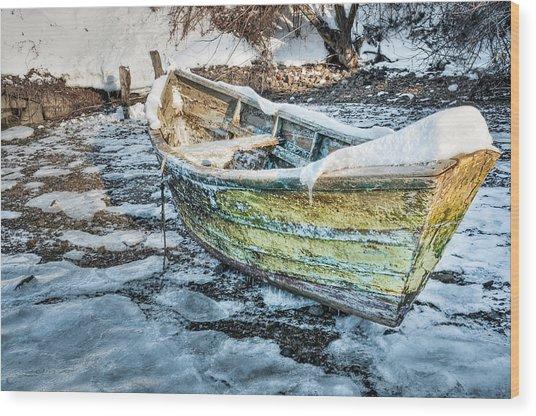 Frozen Dory Wood Print