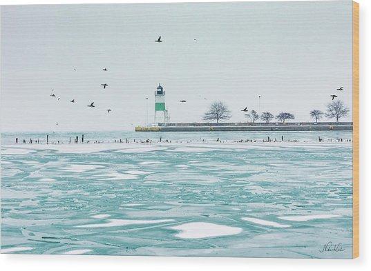 Frozen In Chicago Wood Print