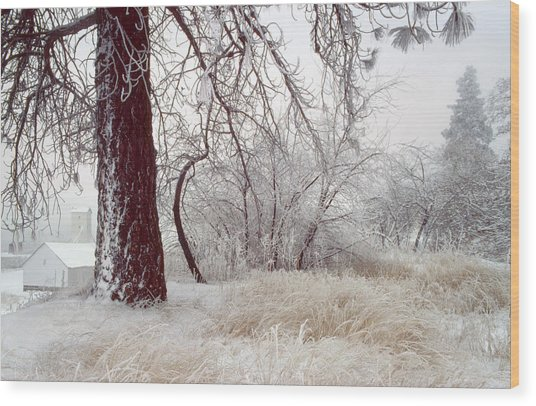Frozen Morning In Palouse Wood Print by Jerry McCollum