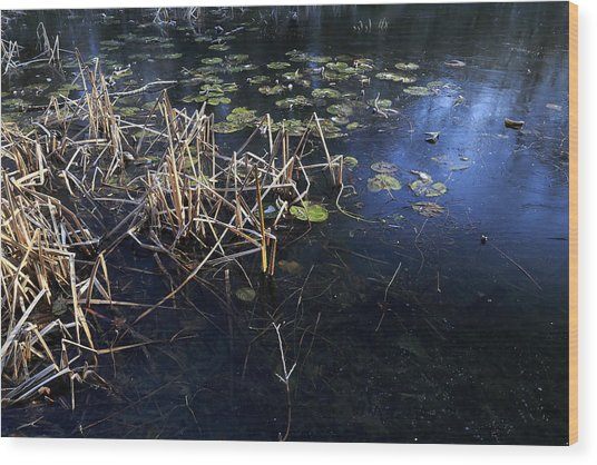 Frozen Pond Wood Print