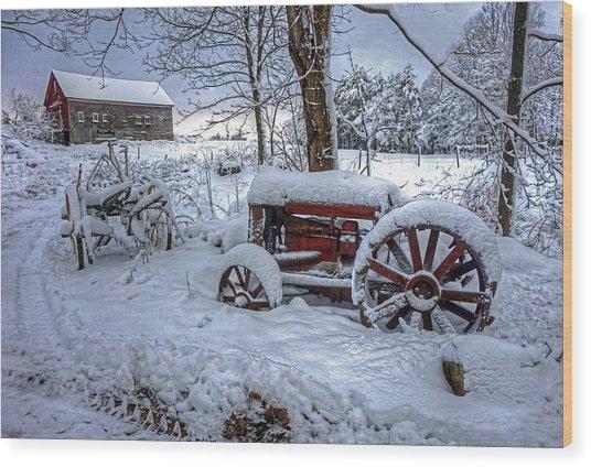 Frozen Relics Wood Print