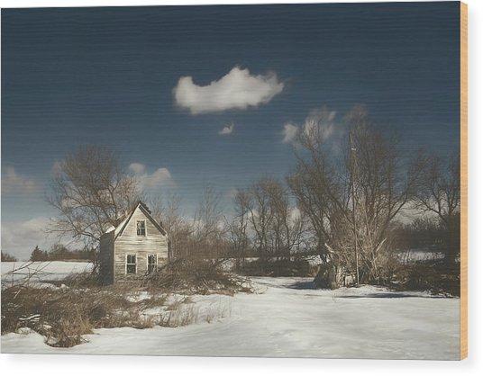 Frozen Stillness Wood Print