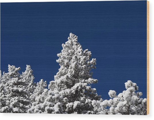 Frozen Tranquility Ute Pass Cos Co Wood Print