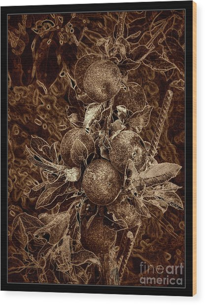 Fruits Of The Loom Wood Print