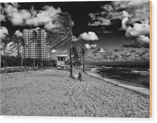 Ft Lauderdale  Wood Print