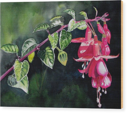 Fuchsia Wood Print by Maria Barry