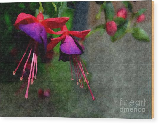 Fuchsia's Beating As One Together -silk Edit Wood Print