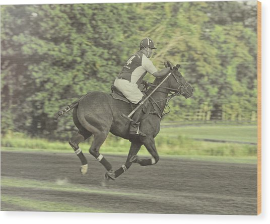 Full Gallop Pony Wood Print by JAMART Photography