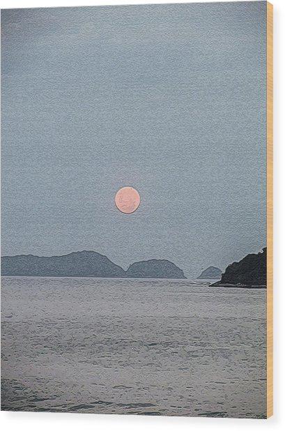 Full Moon At The Beach Wood Print
