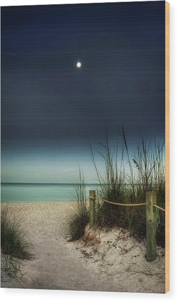 Full Moon Beach Wood Print