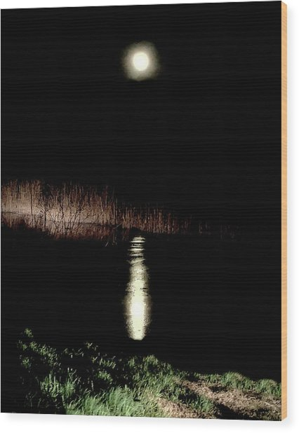 Full Moon Over Piermont Creek Wood Print