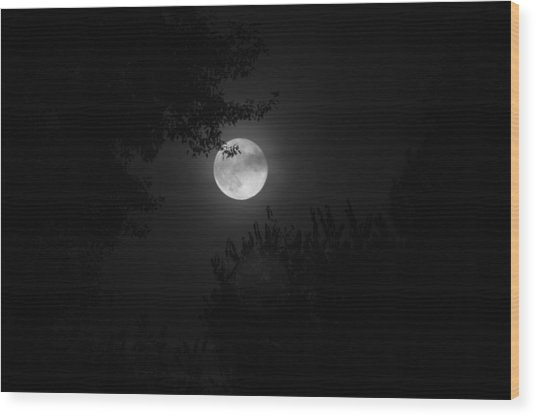 Full Moon With Branches Wood Print