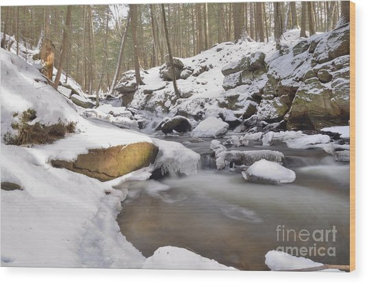 Full Scene  Winter Pool Wood Print