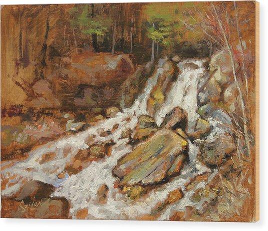 Fumee Falls Quinnessec Mi Wood Print by Larry Seiler