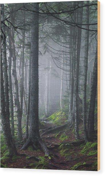 Fundy Fog Wood Print
