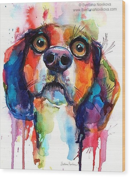 Funny Beagle Watercolor Portrait By Wood Print