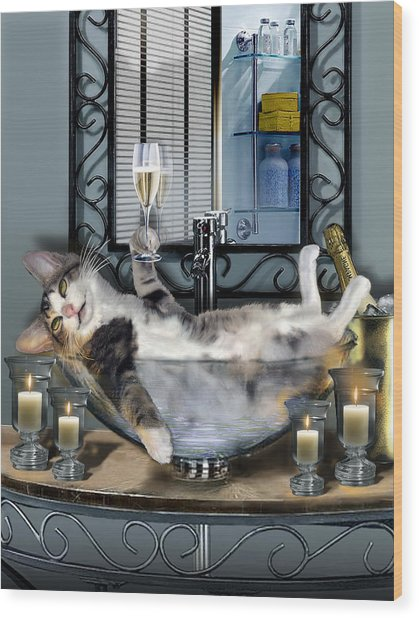Funny Pet Print With A Tipsy Kitty  Wood Print