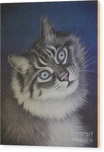 Furry Tabby Cat Wood Print