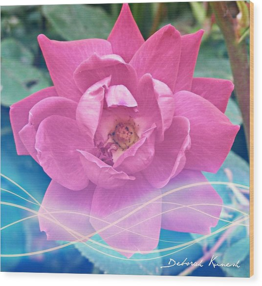 Fuschia Flower Energy Wood Print