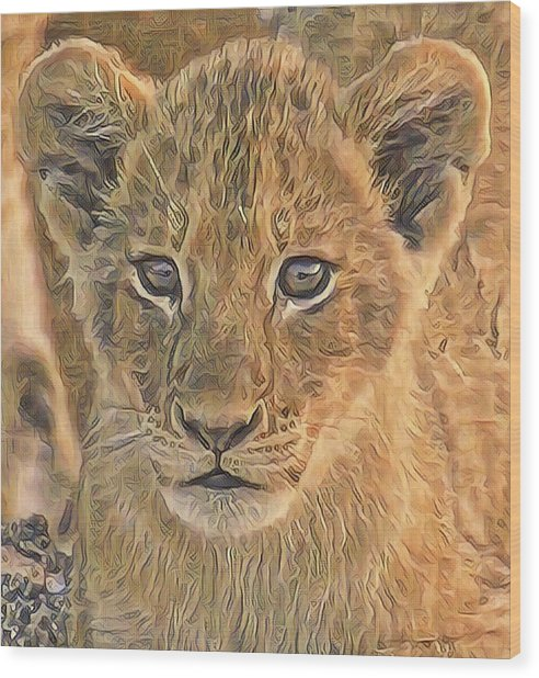 Fuzzy Cubby Wood Print