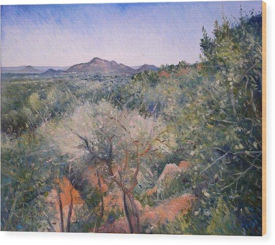 Gaberone Botswana 2008  Wood Print by Enver Larney