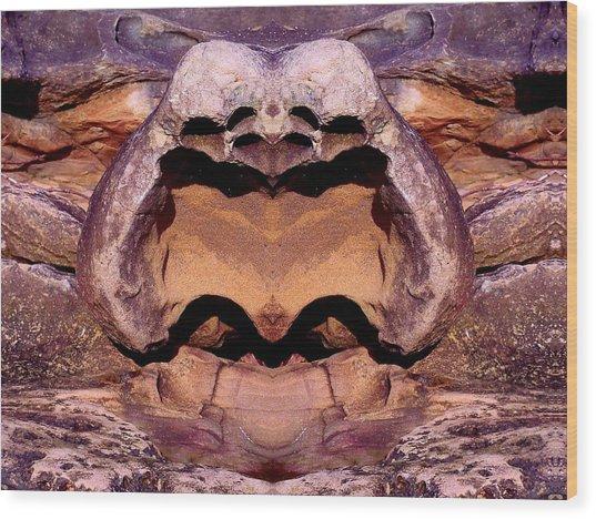 Gabriola Mystery Rock 2 Wood Print