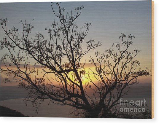 Galilee Sunset Wood Print